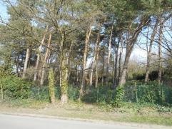 Mooie villagrond , met toplocatie naast groene zone als laatste perceel doch centraal gelegen en vlakbij invalswegen en snelweg e3130. momenteel is he