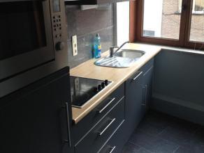 Mooi , ruim appartement rustig gelegen op wandelafstand van het centrum van Leuven.Omvat leefruimte, vernieuwde keuken, aparte badkamer met douche , 1