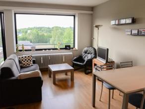 Tof lichtrijk 1 slaapkamerappartement op eerste verdiep met terras en mooi groen uitzicht in Residentie Armane.In nabijheid van centrum, Gasthuisberg,