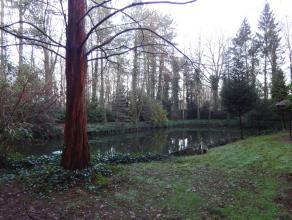 Prachtig perceel bos met twee natuurlijke vijvers. Het perceel bos is 27 are groot en is beplant met loofbomen. Elke vijver ligt op een perceel van +/