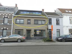 Hasselt: Tof gezellig appartement met 1 slpk en ruim terras.   Goed gelegen appartement op wandelafstand van Hasselt centrum.Directe nabijheid van w