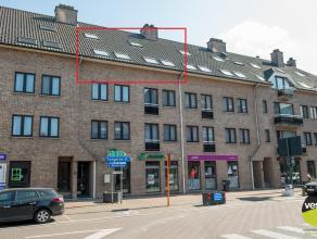 Dit ruime duplex appartement vinden we in hartje Bilzen, gelegen op de derde en vierde verdieping. Op wandelafstand van winkels, supermarkt, school en
