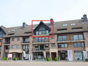 Instapklaar appartement gelegen in de verzorgde residentie Anneleen. <br /> Ruime bewoonbare oppervlakte van 120m2 excl. terras. <br /> Incl. staanpla
