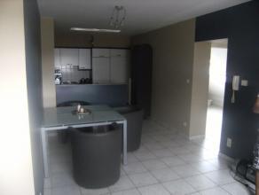 Knus appartement met één Slaapkamer, een Living, een volledig ingerichte Keuken (met elektrisch vuur, dampkap, elektrische oven en koelk