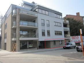 Zeer ruim en modern gelijkvloers appartement met 2 slaapkamers, terras en daktuin. Inclusief ondergrondse garage en kelder. VK: 75 /maand.
