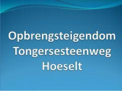 Opbrengsteigendom gelegen op de Tongersesteenweg in Hoeselt.  Goede ligging, vlakbij de autostrade.  Opbrengst van 2000 euro per maand.  Goede i