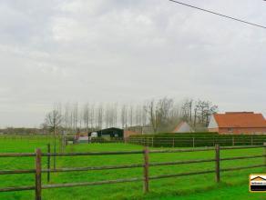 Algemeen Aantal slaapkamers : 4 Aantal badkamers : 3 Adres : Brabantsestraat 32, 3570 ALKEN Bewoonbare opp. : 378 m² Grondoppervlakte : 59976 m&s