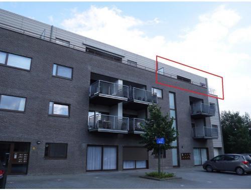 Appartement te huur in lommel 600 ewgx5 era for Te huur in lommel