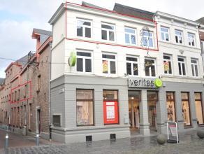 Midden op de Bosstraat gelegen volledig gerenoveerd appartement met 3 slaapkamers, berging, 2 mooie terrassen, kelder en een autostandplaats op 100m.