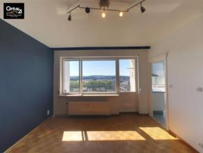 LIEGE: Studio très lumineux avec petite terrasse, cuisine équipée, salle de douche vous ravira. N'hésitez pas à vis