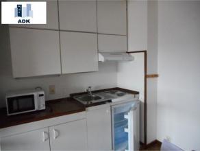 Joli studio bien aménagé, en plein centre ville composé comme suit: un grand séjour lumineux avec terrasse, cuisine ouvert