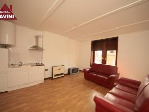 Charleroi : à louer proche de toutes commodités et du centre ville appartement entièrement remis à neuf comprenant hall d'