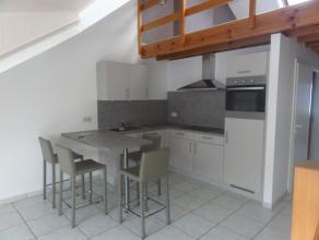 Nog geen nederlandstalige versie beschikbaarJoli appartement duplex situé au centre ville. Il se compose d'un salon/cuisine, 1 chambre, 1 salle