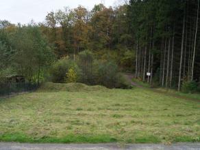 Vous rêvez de bâtir un chalet dans les Ardennes? Ce terrain est ce quil vous faut! Ce terrain plat convient parfaitement à la const