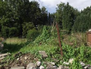 Terrain en zone batissable de +- 2,25 ares  Avec une façade de +- 4 m50  Dans la région de Pont à CellesOffre à partir de