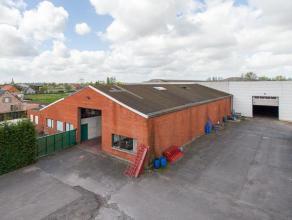 Lowbudget magazijn met verhard buitenterrein en landbouwgrond. Totale grondoppervlakte : 9.886m²  Magazijn deel 1 : 2.000m²  bouwjaar 19