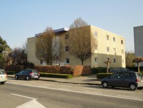 Deze gelijkvloerse studio is gelegen op 1 km van het stadscentrum van Dendermonde.  De leefruimte is ingedeeld in een slaaphoek en een kitchenette b