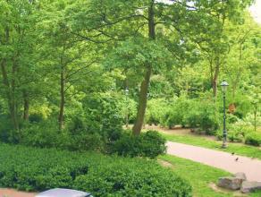 Zonnig hoekappartement met open zicht op het stadspark in de residentiële Karel Janssenslaan. Het betreft een rustig klassevol gebouw. Mogelijkhe