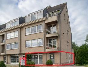 Het appartement is gelegen op wandelafstand van het gezellige centrum van Dendermonde met tal van voorzieningen: winkels, station, scholen, ...  Dit