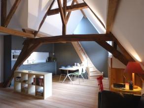 Dit dakappartement is gelegen in een historisch pand in het Patershol. Vanop het dakterras kijk je in alle rust uit over het Gravensteen. Het appartem
