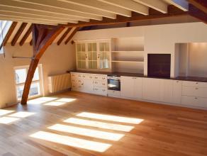 Dit prachtige appartement bevindt zich aan de Sint-Annarei midden in de stad. De straat die maar toegankelijk is voor 1 richting zorgt dat er zo goed