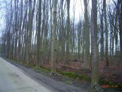 Laatste uniek gelegen perceel villagrond. Residentiële ligging in een bosrijke omgeving. Vlotte verbinding naar het centrum en E40. Zonder bouwve