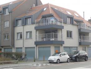 zeer ruim duplex appartement in Residentie Die Craene. Inkom, berging, toilet, keuken, living met groot terras, 2 slaapkamers, bergplaats.