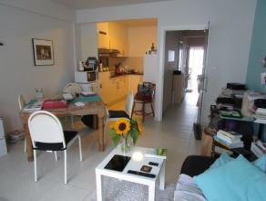 Instapklaar appartement met 1 slaapkamer te huur te Oostende.  De ligging is ideaal bij de winkels, het park en het openbaar vervoer.  Er is een gezel