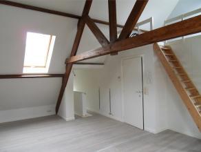Gezellige, volledig gerenoveerde en instapklare studio in het dak van een woning in het stadscentrum. Leefruimte met keukentje, aparte badkamer en ope