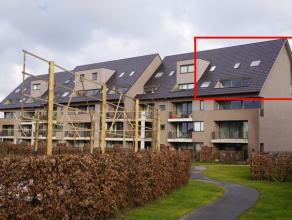 Moderne, instapklare penthouse in nieuw woonproject Ter Steenhove. Op de 3de verdieping van het woonproject Res. Ter Steenhove vinden we deze luxueus