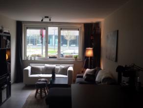 Deze woning is gelegen vlakbij het Nieuw Justitiepaleis te Gent, op fietsafstand van Gent-centrum.De woning (60m²) omvat woonkamer, keuken, badka