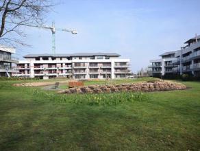 Domein 't EYCKENBOS, gelegen aan de rand van Sterrebos met grote gemeenschappelijke tuin waar u alle rust geniet !Appartement met een bewoonbare opper