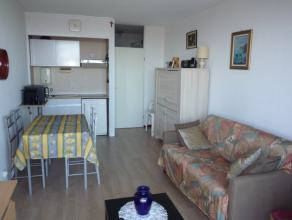 Dit appartement werd recent gerenoveerd. Het omvat: inkom met vestiaire, kitchenette, living met terras, slaapkamer met terras, badkamer met douche, l