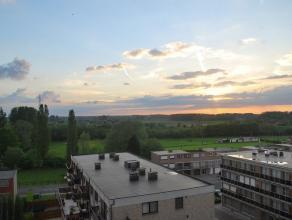 Dendermonde, De Dammenlaan 188 bus 25.Zeer rustig gelegen appartement met 2 slaapkamers en terras. Op 7e verdieping met knap uitzicht.Indeling:Inkom.
