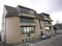 Rustig gelegen groot appartement nabij het centrum en het station, Hall, living met terras, ing. keuken, badkamer met ligbad en douche, wasplaats, 3 s