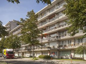 Appartement met 1 SLKS + terras.