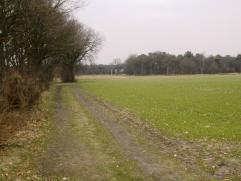 Twee percelen grond gelegen in een zone voor milieubelastende industrieën (cfr gewestplan). Oppervlakte respectievelijk 5.016m² en 11.456m&s