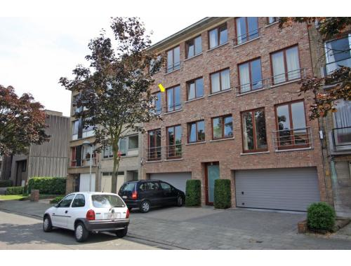 appartement te huur in borgerhout 700 fzfnp immo