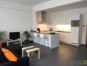 Volledig en recent gerenoveerd appartement op een zeer centrale ligging in de Quellinstraat. Deze straat is aan een duidelijke opmars bezig: talrijke