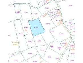 """KOOP 3: Lot 3: perceel bosgrond, kad. geg.: sectie A, nr. 380/C; opp.: 6.882 m²; Vkr.; Ag;  Gegevens openbare verkoping  In café """"Bouwelho"""