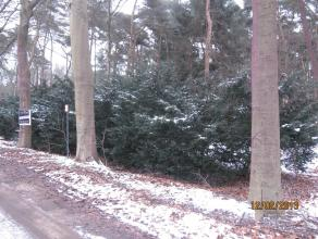Perceel grond (ca. 2.575 m²) te Meerhout.