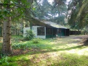 IN OPTIE !!!Vergunde vakantiewoning bijzonder rustig gelegen op een ruim perceel in een bosrijke omgeving.De woonst zelf heeft nood aan renovatie werk