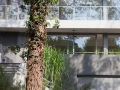 Sublime villa à Uccle ! Comprenant 4 belles chambres, 2 salles de bain, une cuisine équipée avec parquet au sol.Possibilit&eacute