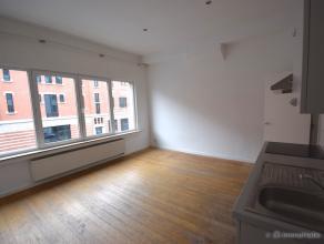 Studio/appartement met 1 slaapkamer en ruime badkamer gelegen nabij Park Spoor Noord, nabij het eilandje, Sint-Jansplein en nabij de Paardenmarkt. Vla