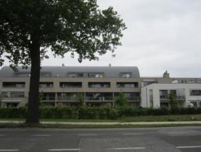 Magnifiek duplex appartement met zuidgericht terras en twee badkamers!