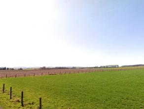 Zeer mooi en rustig gelegen te renoveren hoeve op 1,25 hectare!