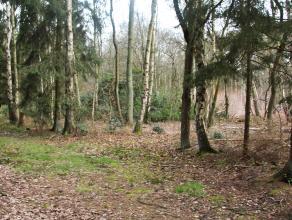 Bouwgrond bestemd voor verblijfsrecreatie, gelegen op een uitzonderlijke locatie in zeer groene en beboste omgeving. Ideaal voor paardenliefhebbers !