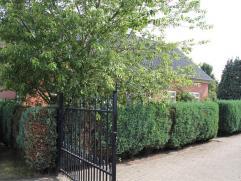 Tussen de Roosendaal en Breda ligt het dorp Hoeven, daar ligt deze woning met paardenstallen op 0,5 hectare. Op de begane grond treft u de woonkamer,
