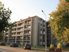 """Dit gezellig gerenoveerd appartement met zeer veel lichtinval is gelegen in hartje Beveren """"de Ciamberlanidreef"""". Doordat het appartement gelegen is"""