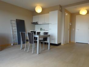 Leuke studio met een terras Z/W gelegen in het centrum van Wachtebeke. Alle comfort aanwezig. GEEN afzonderlijke slaapkamer !! Huurprijs 450euro + 70e
